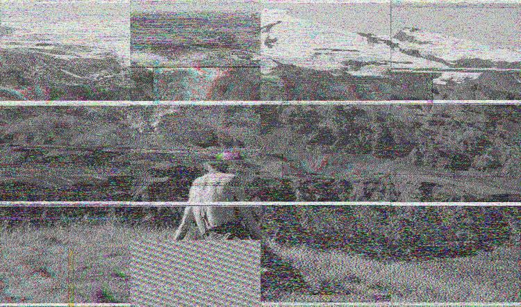 业余界:本月,来自冰岛的艺术级SSTV图像