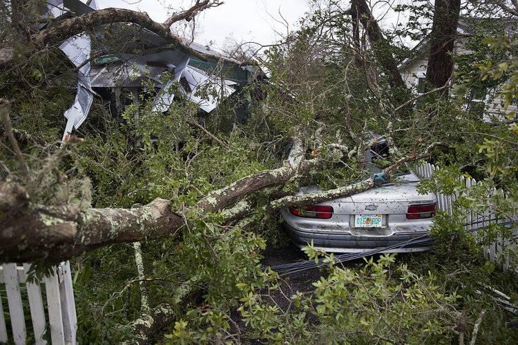 业余界:业余爱好者在行动-Michael 4级飓风