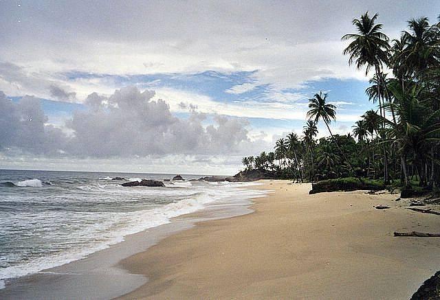 DX:9Y4/VE3EY  特立尼达和多巴哥岛