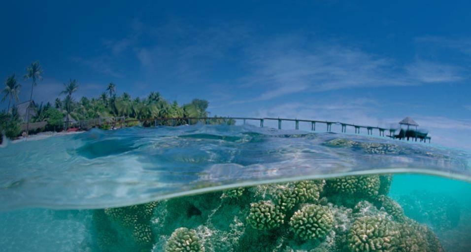 DX:FO/JI1JKW  法卡拉瓦环礁